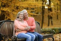 Couples mûrs se reposant en parc Images stock