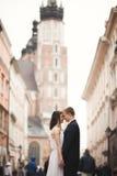 Couples magnifiques de mariage, jeune mariée, marié embrassant et étreignant la position dans la foule Photo libre de droits
