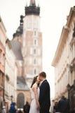 Couples magnifiques de mariage, jeune mariée, marié embrassant et étreignant la position dans la foule Photographie stock libre de droits