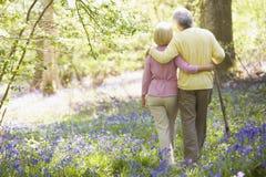 Couples marchant à l'extérieur avec le bâton de marche Image libre de droits