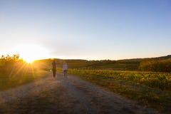 Couples marchant au-dessus du vignoble français photographie stock libre de droits