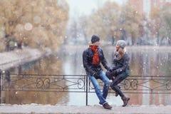 Couples marchant au parc d'hiver Photo stock