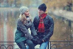 Couples marchant au parc d'hiver Photos stock