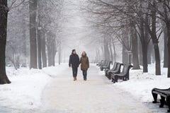 Couples marchant dans l'horaire d'hiver Image libre de droits