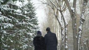Couples marchant dans le jour de neige banque de vidéos