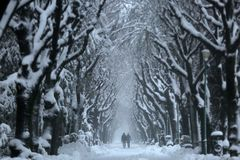 Couples marchant dans une allée neigeuse image stock
