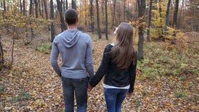 Couples marchant en nature banque de vidéos
