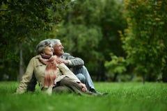 Couples marchant en parc d'automne Photographie stock libre de droits