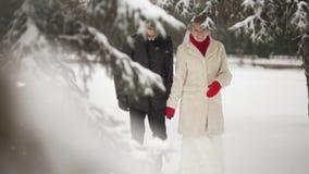 Couples marchant en parc d'hiver clips vidéos