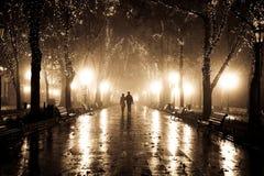 Couples marchant à la ruelle dans des lumières de nuit. Images stock