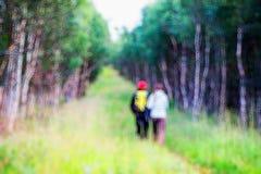 Couples marchant par le contexte de bokeh en bois de la Norvège Images stock