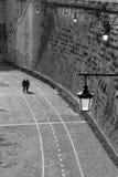 Couples marchant sur la promenade. Images libres de droits