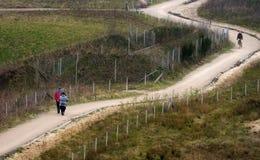 Couples marchant sur la route Image stock