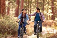 Couples masculins gais faisant un cycle par la région boisée d'automne image libre de droits