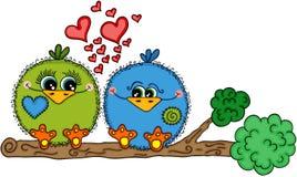 Couples mignons d'oiseau d'amour se reposant sur la branche d'arbre Image stock
