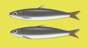 Couples mignons de vecteur de poissons de bande dessinée morte de sardines illustration libre de droits