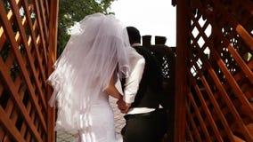 Couples mignons tenant les bras de chacun banque de vidéos
