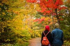 Couples musulmans pendant la saison d'automne photos libres de droits