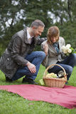 Couples by picnic Stock Photography