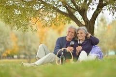 Couples pluss âgé à un pique-nique en parc Image libre de droits