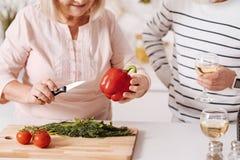 Couples pluss âgé amusés faisant cuire le dîner ensemble dans la cuisine Photos libres de droits