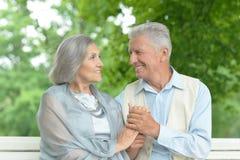 Couples pluss âgé ayant le repos dans le parc Photos libres de droits