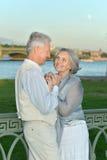 Couples pluss âgé ayant le repos dans le parc Image libre de droits