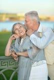 Couples pluss âgé ayant le repos dans le parc Photo libre de droits
