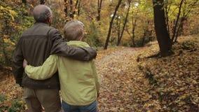 Couples pluss âgé dans l'amour embrassant en automne banque de vidéos