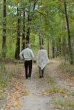 Couples pluss âgé dans la forêt Photographie stock