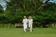 Couples pluss âgé dans le jardin tropical Photographie stock