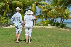 Couples pluss âgé fonctionnant sur la plage Photographie stock
