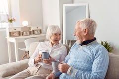 Couples pluss âgé gais causant tout en buvant du café Images stock