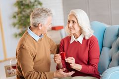 Couples pluss âgé harmonieux célébrant l'anniversaire à la maison Image libre de droits