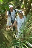 Couples pluss âgé heureux dans la forêt tropicale Image libre de droits
