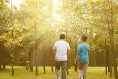 Couples pluss âgé marchant de retour vue Photos libres de droits