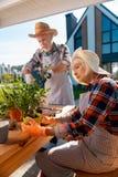 Couples pluss âgé portant la chemise carrée et les tabliers rayés plantant les fleurs à la maison photo libre de droits