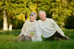 Couples pluss âgé se reposant en nature d'automne Photo libre de droits