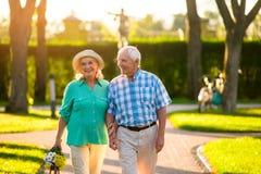 Couples pluss âgé sur le fond de nature Images libres de droits
