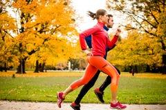 Couples pulsant en nature d'automne Photographie stock