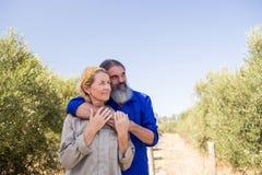 Couples réfléchis se tenant dans la ferme olive Photo stock