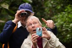Couples recherchant dans la forêt Photos stock