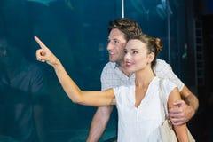 Couples regardant des poissons dans le réservoir Image libre de droits
