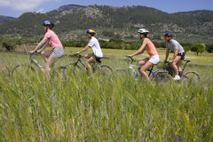 Couples riding bicycles through rural field Stock Photography