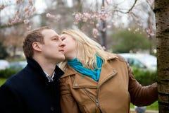 Couples romantiques à la source Photographie stock libre de droits