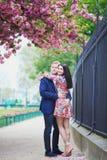 Couples romantiques à Paris avec des arbres de fleurs de cerisier Image libre de droits