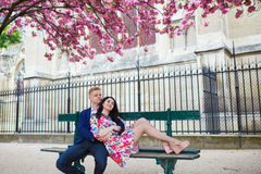 Couples romantiques à Paris avec des arbres de fleurs de cerisier Images stock