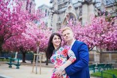 Couples romantiques à Paris avec des arbres de fleurs de cerisier Images libres de droits