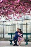 Couples romantiques à Paris avec des arbres de fleurs de cerisier Photo libre de droits