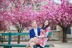 Couples romantiques à Paris une journée de printemps Photo libre de droits